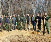 """Акција садње стабала """"Засади дрво"""" на пет локација у Пчињском округу"""